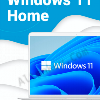 Windows 11 Home (Electronic key)