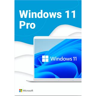 Windows 11 Professional (Electronic key)