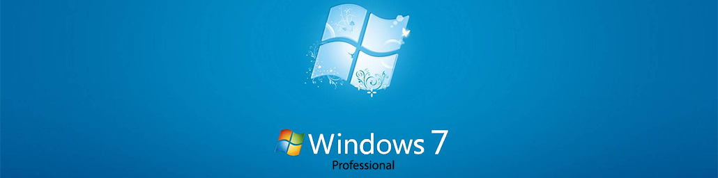Microsoft Windows 7 Professional Large Logo
