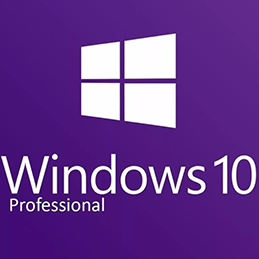 Download Windows 10 Professional