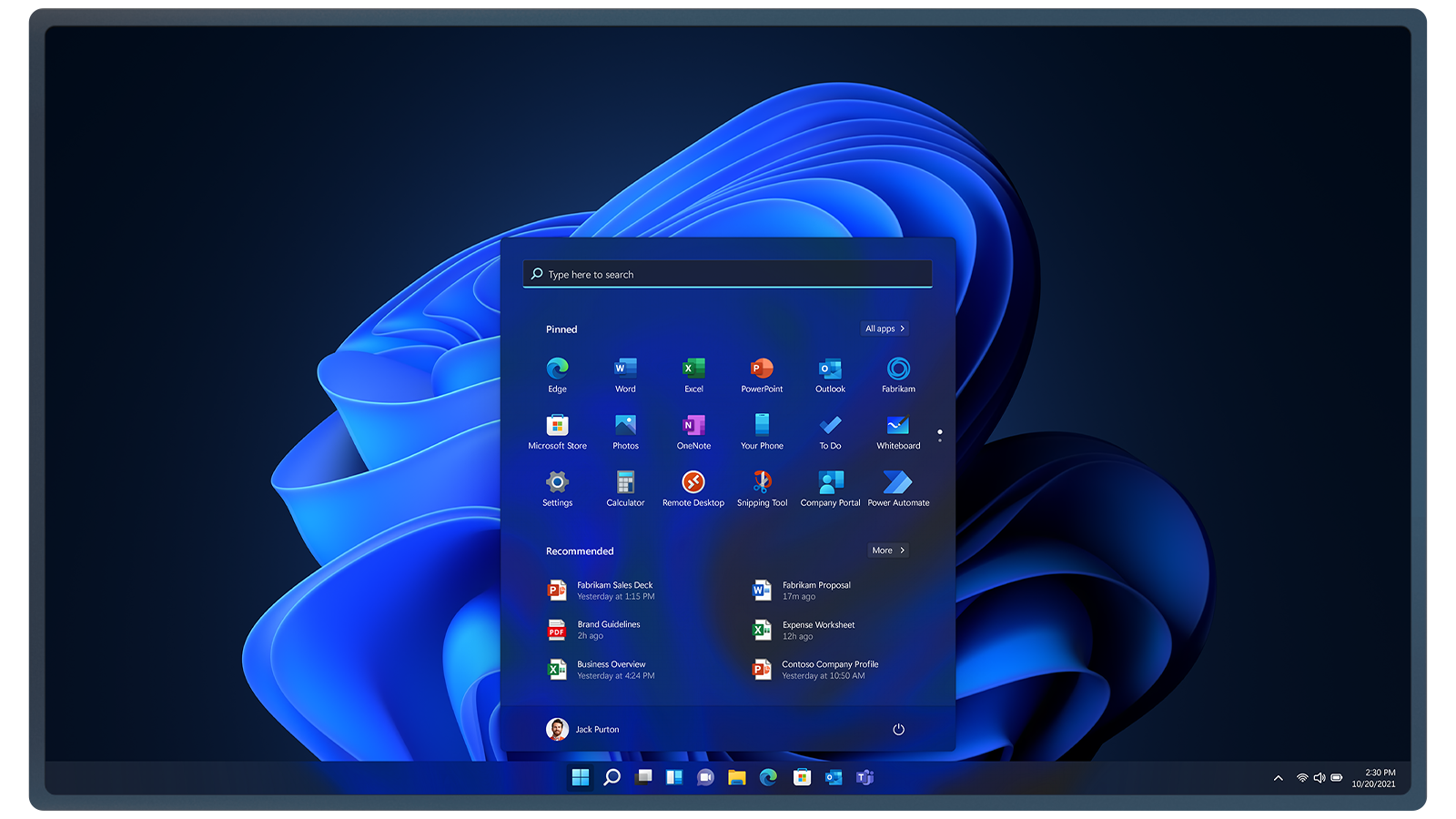 Microsoft Windows 11 Professional Large Logo