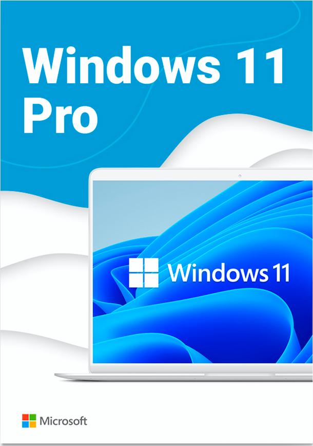 Download Windows 11 Professional 64 bit